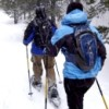 Northwest Snowshoe Trails